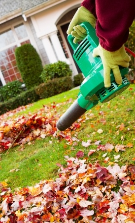 Tips for Using a Leaf Blower This Fall | Lawrence Tool Rental Inc.