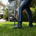 Sprucing Up Your Lawn for Springtime