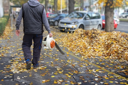 Autumn Has Arrived! Time to Think About Leaf Control