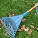 Three Tips to Prepare Your Lawn for Winter