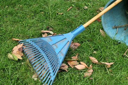 Prepare Lawn For Winter three tips to prepare your lawn for winter | lawrence tool rental inc