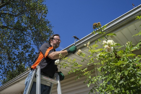 Keep in Mind These Basic Rules of Ladder Safety