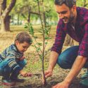 Keep These Tree Planting Tips in Mind This Spring