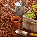 How to Reuse Wood Chips from Your Next Yard Cleanup