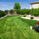 5 Essential Lawn Care Tools to Keep at Your Home